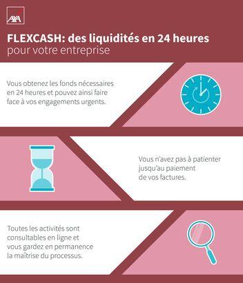 Flexcash: des liquidités en 24 heures pour votre entreprise Vous obtenez les fonds nécessaires en 24 heures et pouvez ainsi faire face à vos engagements urgents.  Vous n'avez pas à patienter jusqu'au paiement de vos factures.  Toutes les activités sont consultables en ligne et vous gardez en permanence la maîtrise du processus.